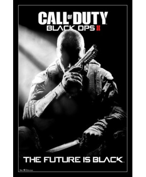 Call of Duty: Black Ops II Steam Key (Email delivery)